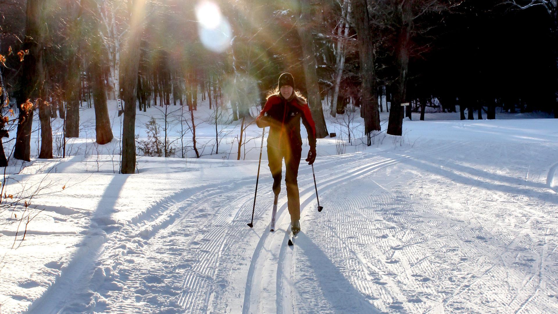 moonlight cross country skiing