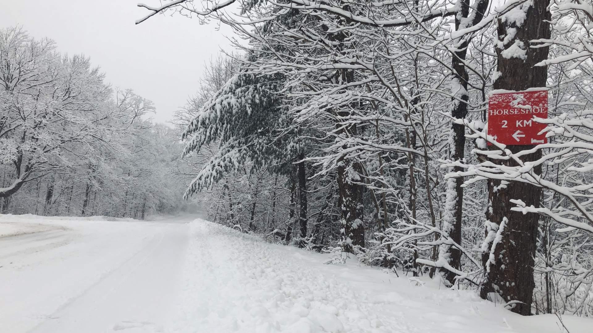 "Snowy Road in Horseshoe Valley with Horseshoe Sign reading ""3km Horseshoe"""